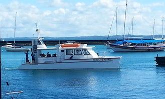 Catamaran Farol do Morro em Salvador