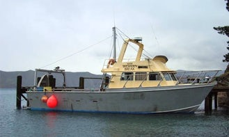 "45' Head Boat ""Western Break"" Cruising & Fishing & Diving in Nopera, New Zealand"