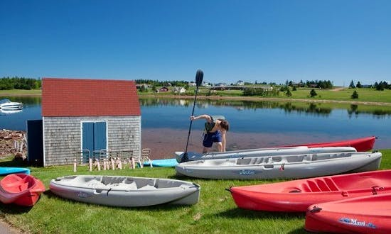 Kayak Rental On New London Bay