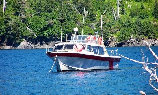 36' Cuddy Cabin Charter In Halibut Cove, Alaska