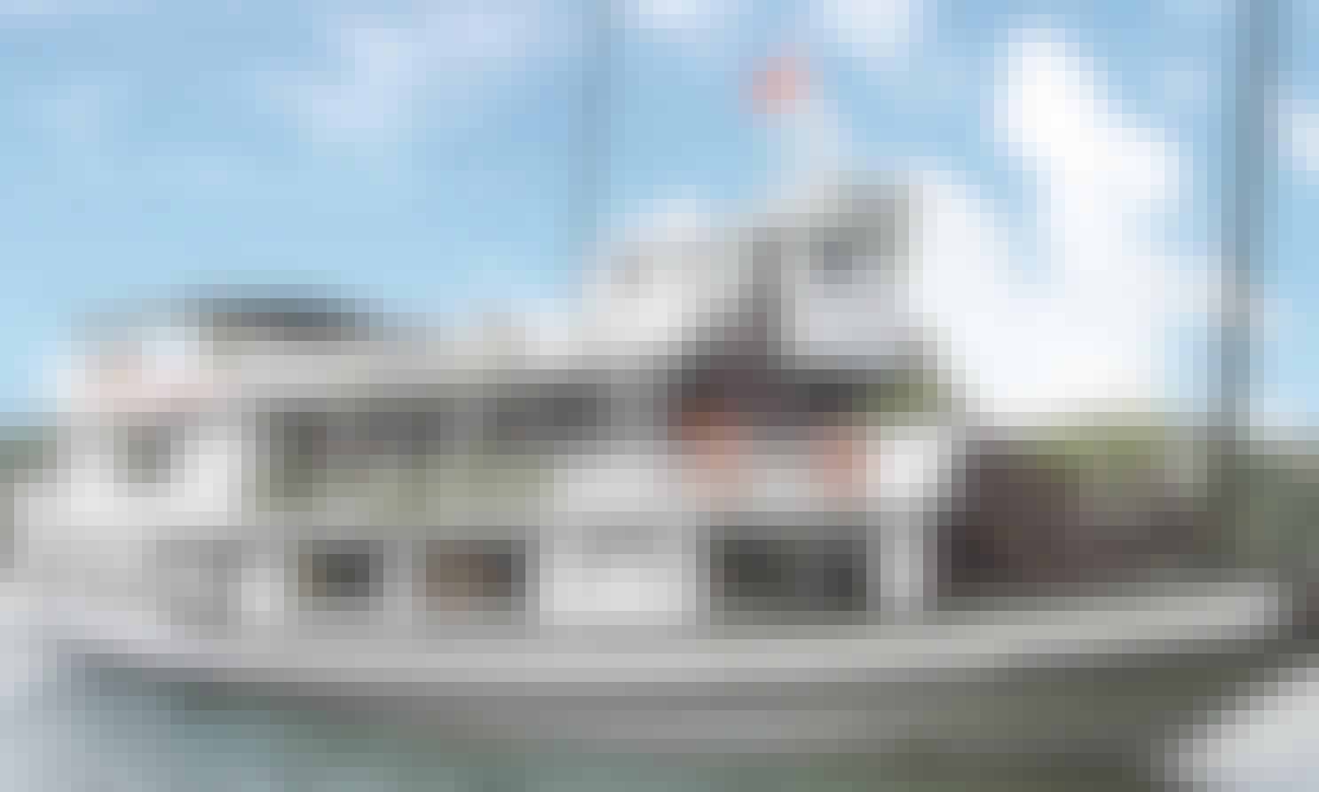 Paragon Cruise