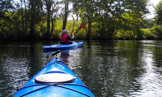 Single Kayak Rental In Evans