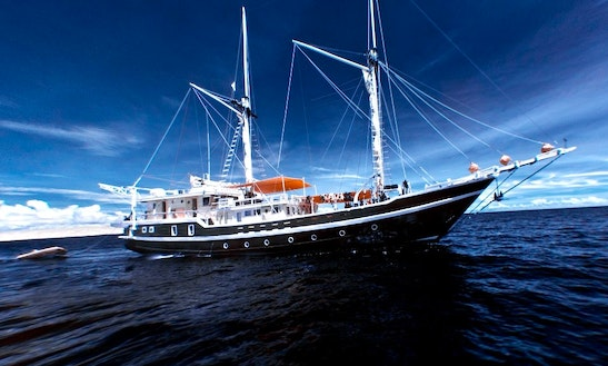 Liveaboard Dive Cruises In Indonesia