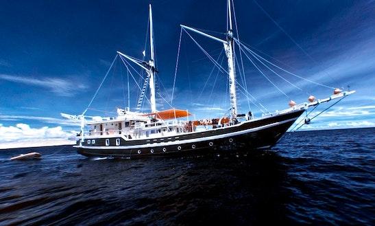 Liveaboard Dive Cruises In Indonesia