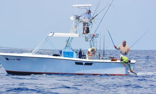 31' Fully Equipped Fishing Charter In Quepos