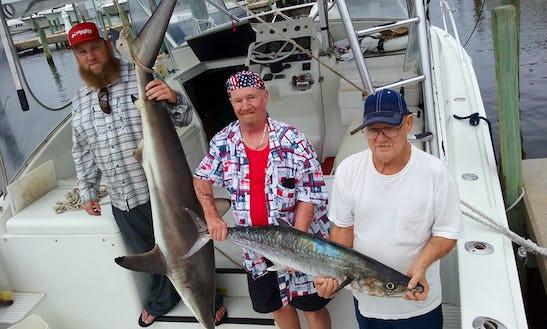 Motor Yacht Fishing Charter In Biloxi