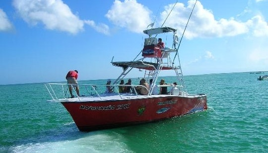 Boat Deep Sea Fishing Charter In Holbox Island