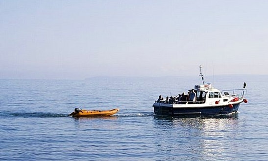 Trawler Fishing Trips In Devon, United Kingdom