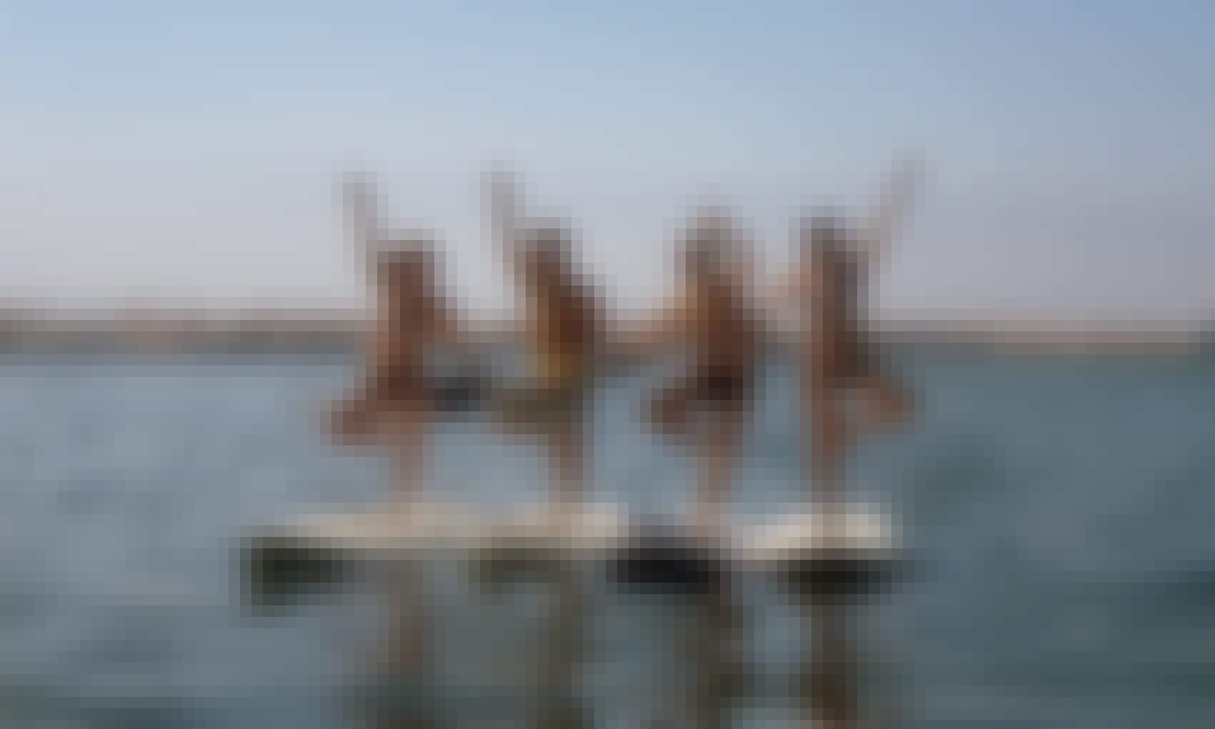 Stand Up Paddleboard Rental in Aveiro