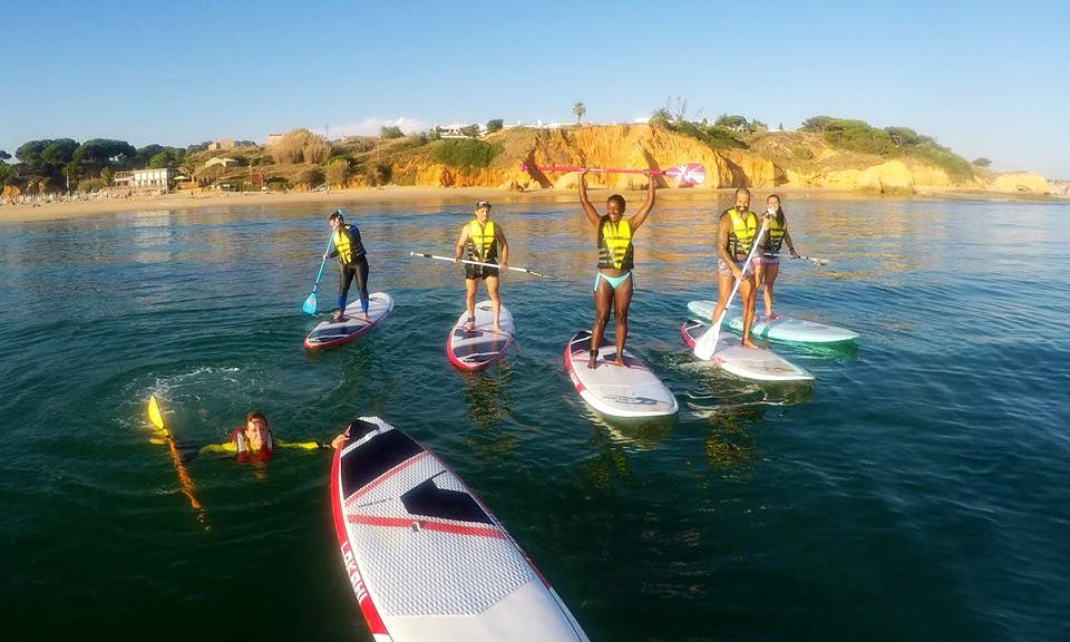 Stand Up Paddleboard Tours & Safari in Olhos de Água