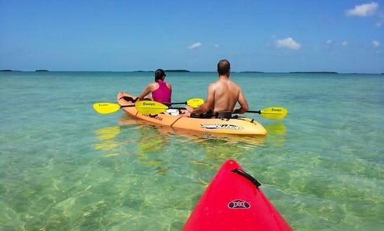 Kayak Tours In Summerland Key