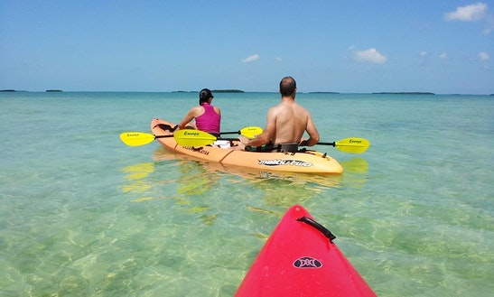 Kayak Tours In Summerland Key