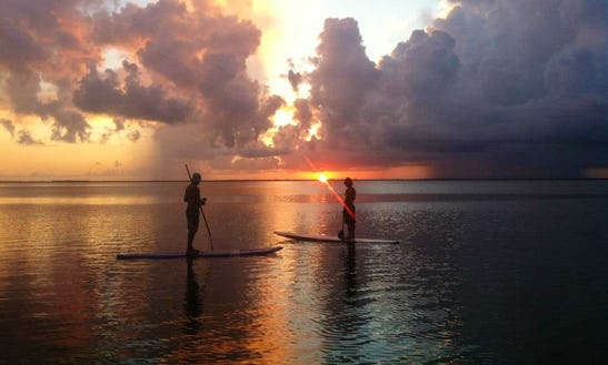 Dura-tec Stand Up Paddleboard Rental In Captiva Island