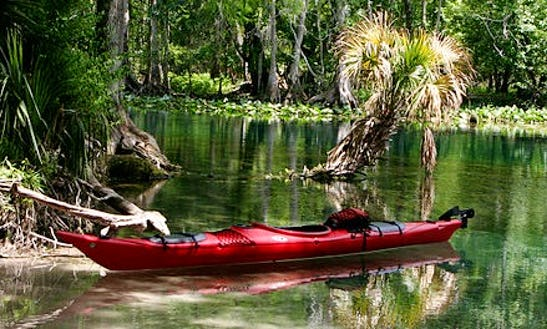 Guided Kayak Tours And Rental In Merritt Island