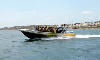 Hysucat Boat Dolphin Watching Tours in Algarve Coast