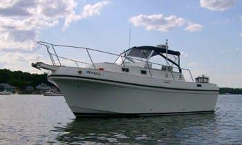 26ft Albin Express Motor Yacht Fishing Charter in Bristol, Rhode Island