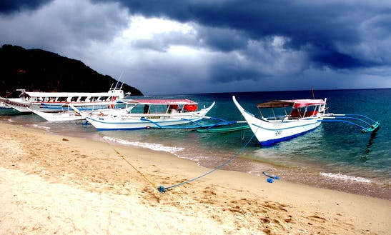 (8 Pax) Diving Boat Tour In Puerto Galera