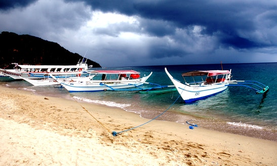 (8 Pax) Diving Boat Tour In Puerto Galera