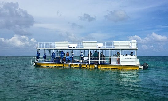 'paradise Adventure' Boat Trips In Cancún