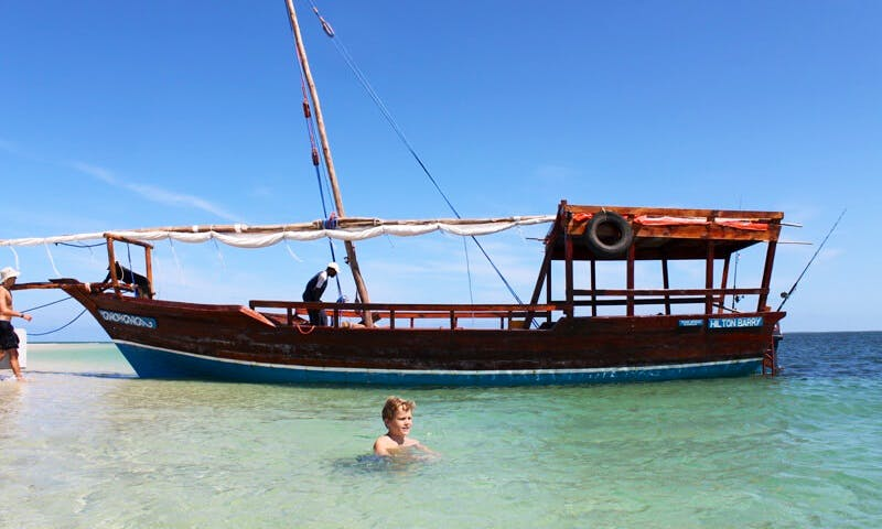 Boat Island Safari and Diving Trips in Cape Town, South Africa