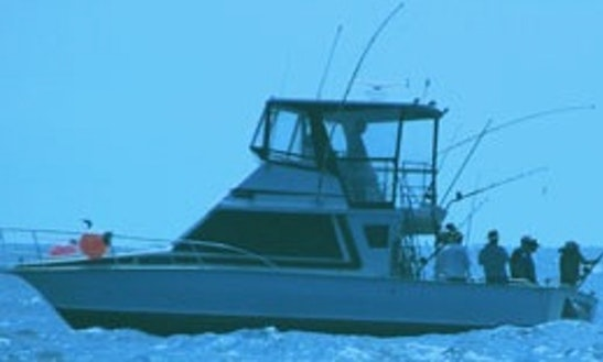 Sport Fisherman Fishing Trips In North Arm Cove, Australia