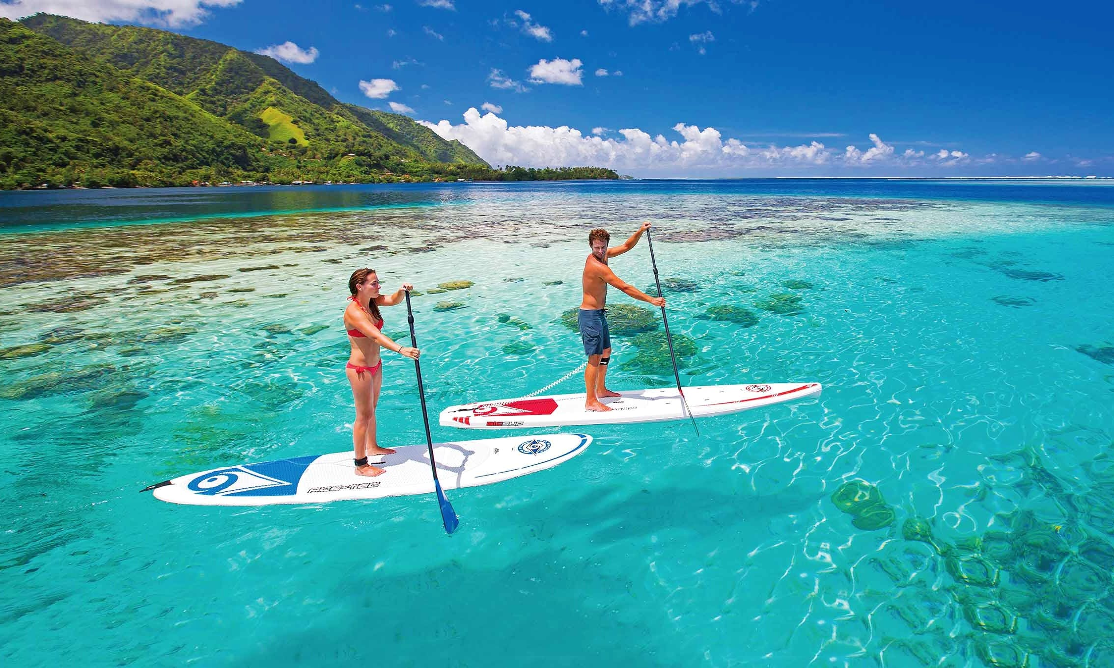 Stand Up Paddleboard Tours in Dania Beach
