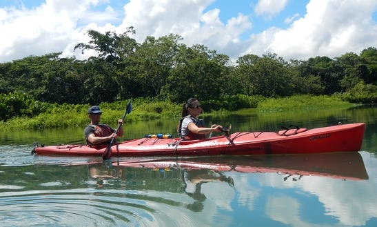 Guided Kayak Tour On South Florida Coastal Waterways From Stuart, Florida