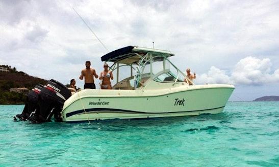 29' Power Catamaran