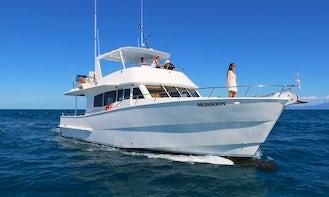 54' Power Mega Yacht Trips in Port Douglas, Australia