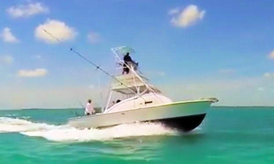 Fishing Charter On 31ft 'miss Chief' Boat In Key Largo, Florida