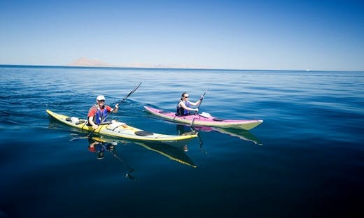 Sea Kayaking and Whale Watching In Loreto, Mexico