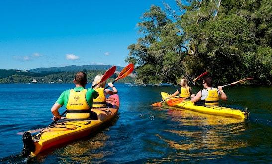 2 Pax Kayaking In Tauranga