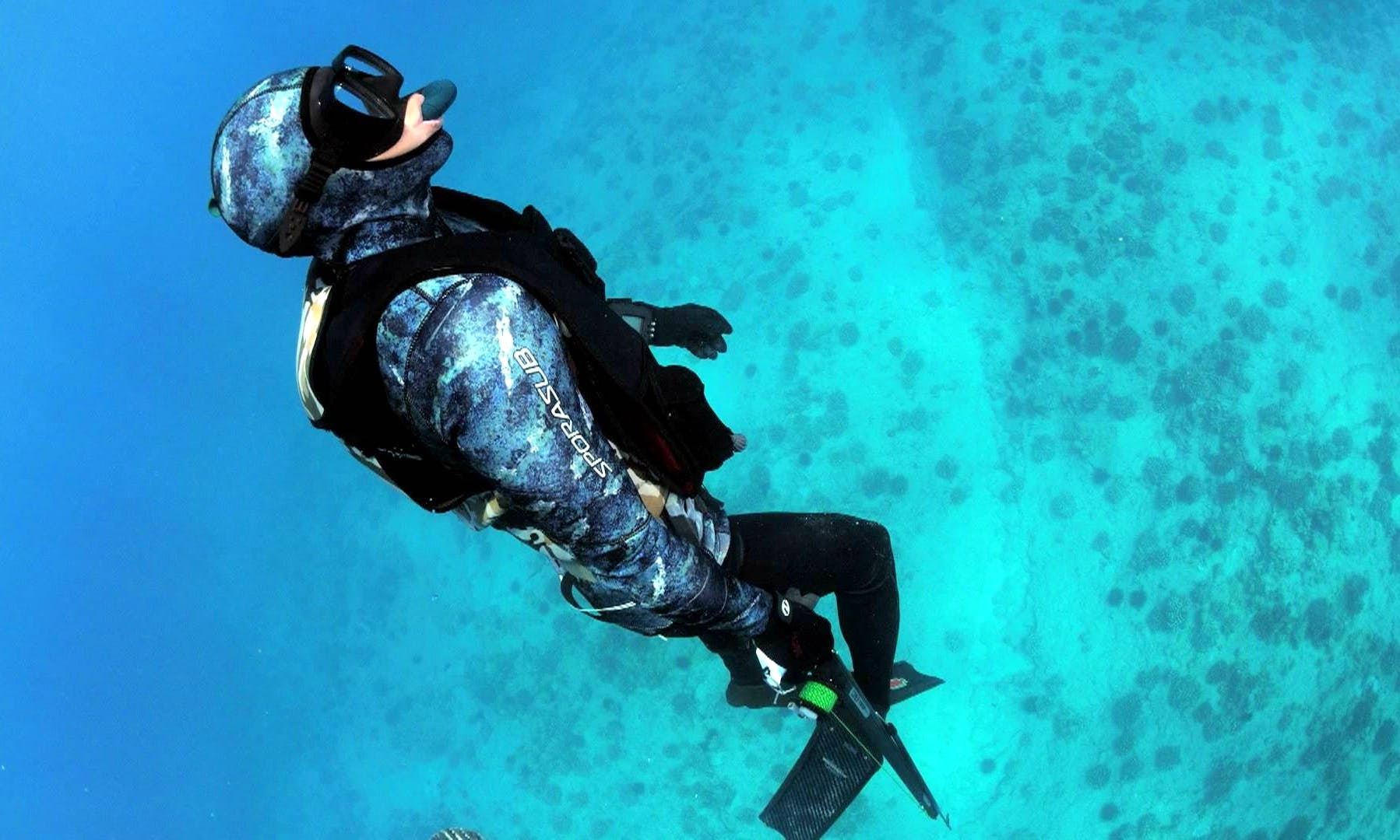 Free Diving Course aboard 8 People Dive Boat in Eilat, Israel