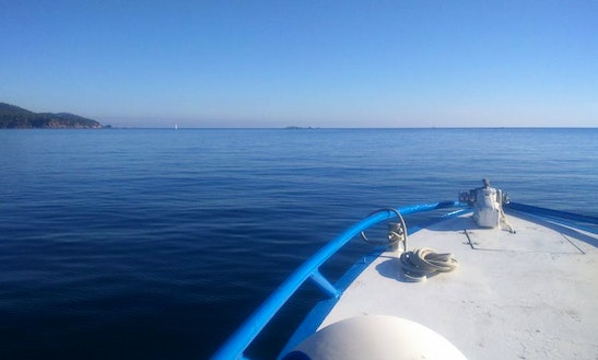 Passenger Boat Diving Trips & Courses In Vic, Spain