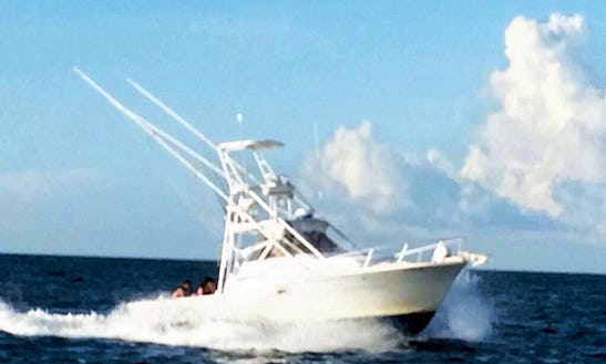 Clearwater Fishing Charters With Captain Steve