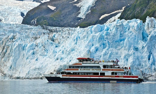 Luxury Catamaran Glacier Cruise In Anchorage