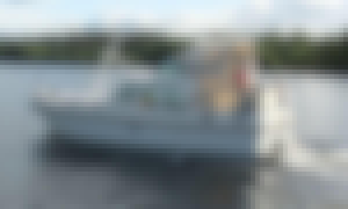 Rent Grand Sturdy 29.9 Motor Yacht In Heukelum