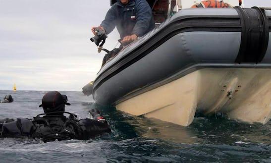 Rib Boat Diving Trips In Ramsgate, Australia