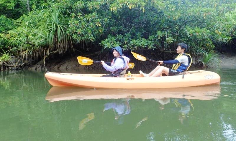 Mangrove Kayak Tour on Iriomote Island in Japan
