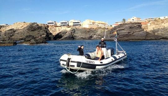 White Rib Diving Trips & Padi Courses In Cabo De Palos