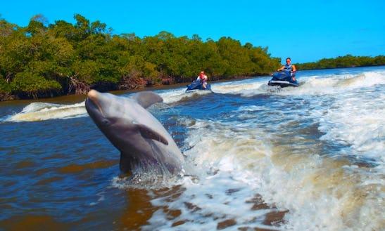 Yamaha Jet Ski Rental & Guided Tours In Key Largo, Florida