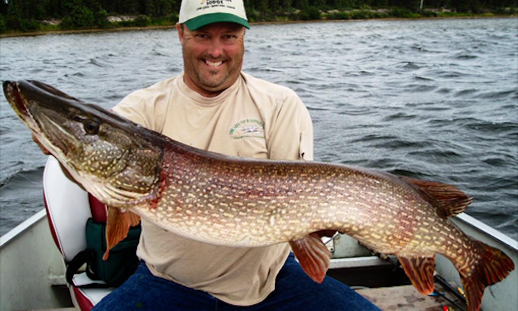 Fishing trips in lynn lake canada getmyboat for Canada fishing guide