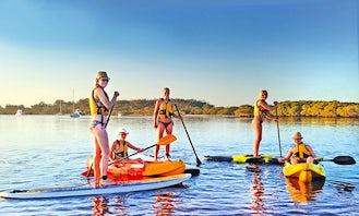 Single Kayak Rental in Hawks Nest Tea Gardens