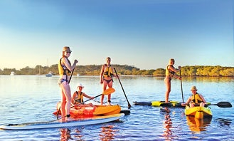 Stand Up Paddleboard Rental in Hawks Nest