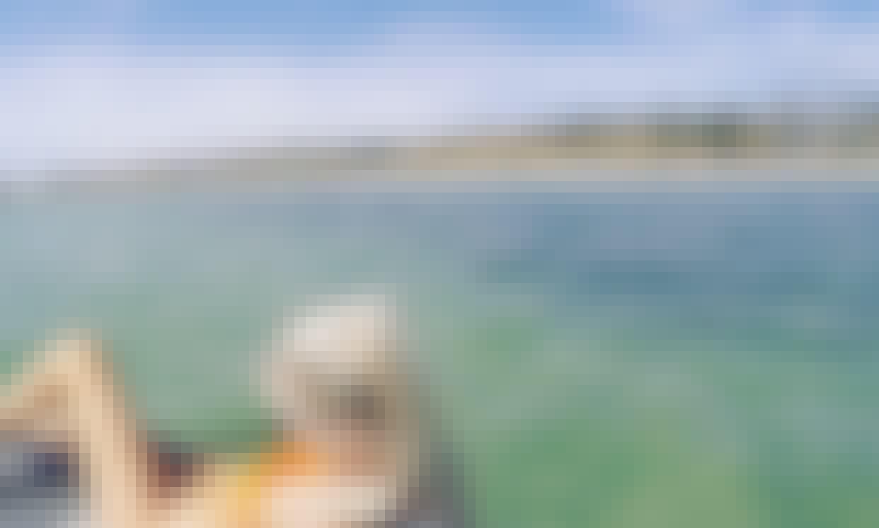 Paddleboard Rental in Seacliff