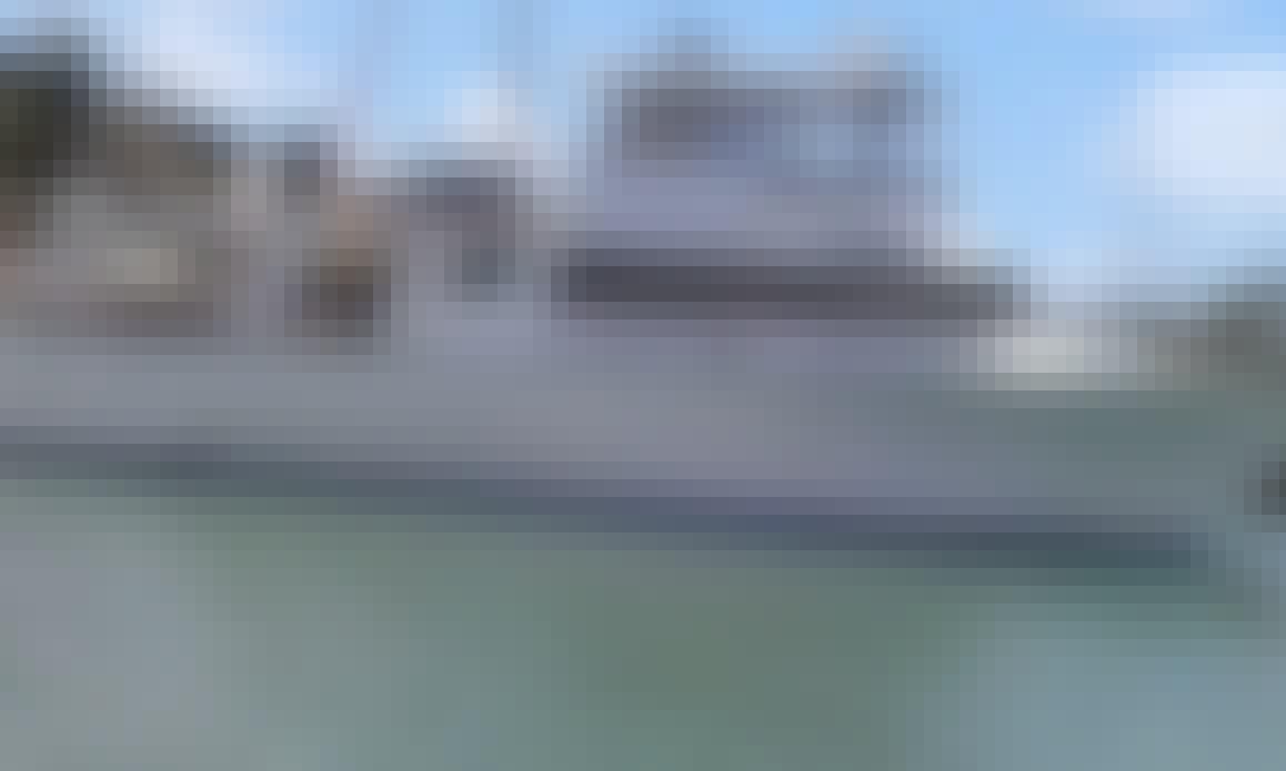 'Force-5' Boat Sport Fishing Charter in Rosslyn