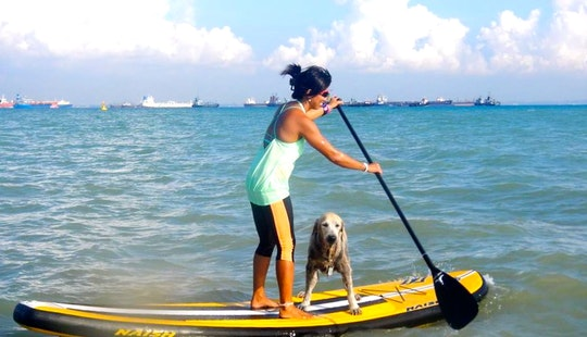 Sup (stand Up Paddle) Lessons & Sup Tours In Singapore
