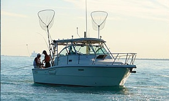30' Cuddy Cabin Fishing Trips In Chatham-kent, Canada