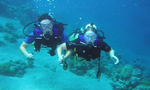 Scuba Diving And Snorkeling In Aqaba