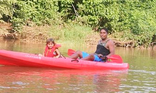 Explore The River In Nosara, Costa Rica On A Tandem Kayak
